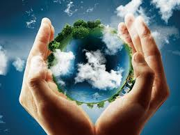 The Importance of Environmental Awareness