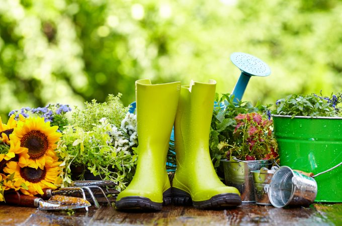 10 Tools Every Gardener Must Have